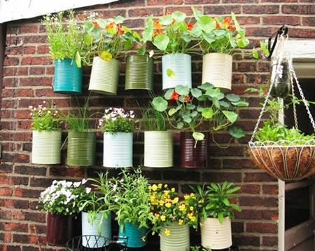 استفاده از گل ها و گیاهان رنگارنگ: