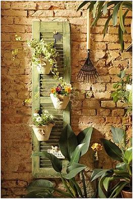 داشتن یک قفسه ی کوچک برای گیاهان مینیاتوری: