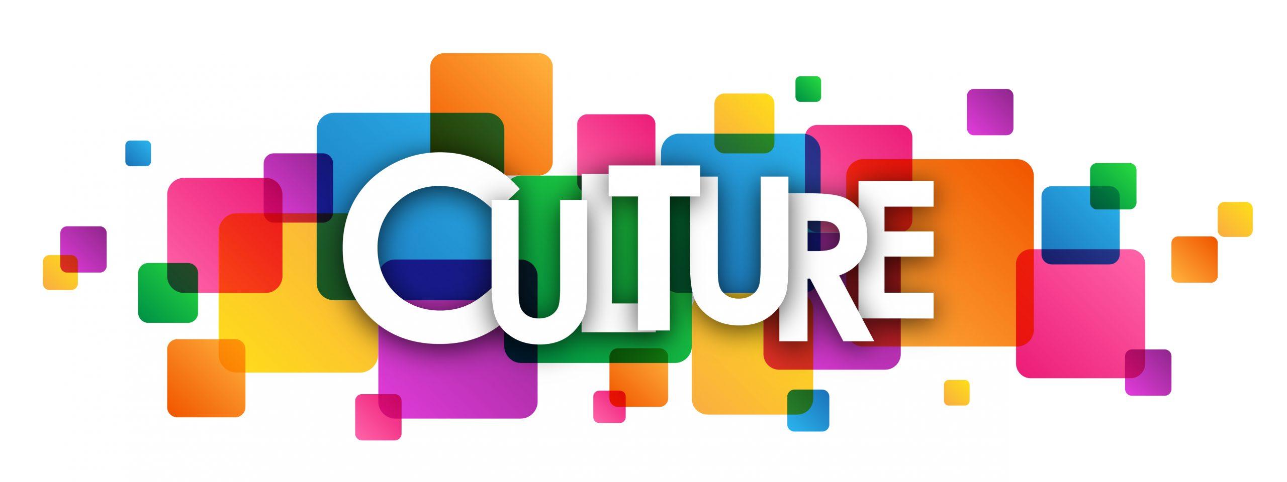 عوامل شکل گیری فرهنگ